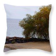 Fall Lake Tree Throw Pillow