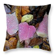 Fall Leaves 2015 Throw Pillow