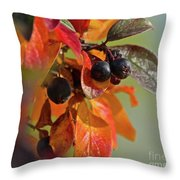 Fall Leaves And Berries Throw Pillow