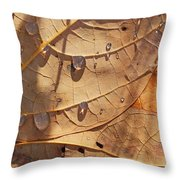Fall Leaves And Dew 5 2017 Throw Pillow