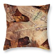Fall Leaves And Dew 8 2017 Throw Pillow