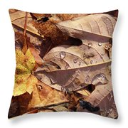 Fall Leaves And Dew 9 2017 Throw Pillow