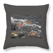 Fall Leaves Floating On The River Throw Pillow