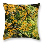 Fall Leaves In The Smokies Throw Pillow