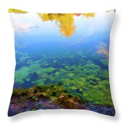 Barely Touching The Surface Of The Water Throw Pillow