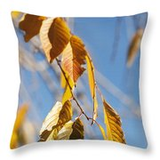 Fall Leaves Study 3 Throw Pillow
