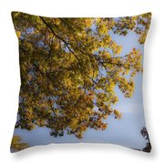 Fall Magic Throw Pillow