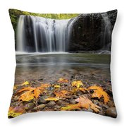 Fall Maple Leaves At Hidden Falls Throw Pillow
