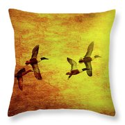 Fall Migration . Northern Shovelers . Texture . 40d5393 Throw Pillow