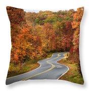 Fall Mountain Road Throw Pillow