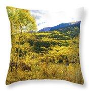Fall Mountain Scenery Throw Pillow