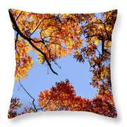 Fall Oak Leaves Up Above Throw Pillow