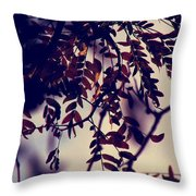 Fall Of Shades Throw Pillow