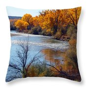 Fall On Animas River Throw Pillow
