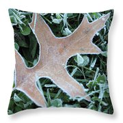 Fall On Ice Throw Pillow