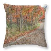 9018 - Fall On Murphy Lake Iv Throw Pillow