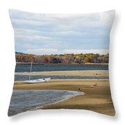 Fall On Plum Island Throw Pillow