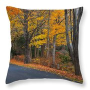Fall On The Cape Throw Pillow