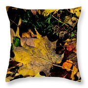 Fall On The Ground Throw Pillow