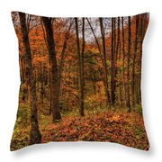 Fall On The Ice Age Trail Throw Pillow