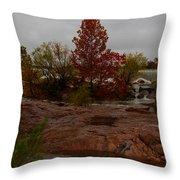 Fall On The Llano Throw Pillow