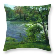 Fall On The Maumee River Throw Pillow