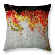 Fall On The Wall Throw Pillow