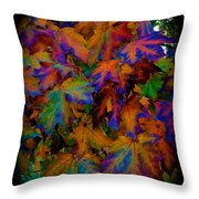 Fall Painting By Mother Nature Throw Pillow