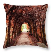 Fall Passage Throw Pillow