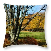 Fall Pasture Throw Pillow