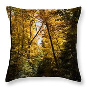 Fall Path In Golden Yellow Throw Pillow