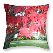 Fall Reds Throw Pillow