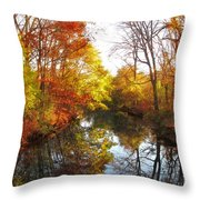 Fall Reflected Throw Pillow
