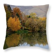 Fall Reflection Below The Hills In Prosser Throw Pillow
