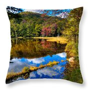 Fall Reflections On Cary Lake Throw Pillow