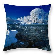 Fall River Winter Throw Pillow