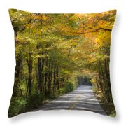 Fall Road At Oak Mountain Throw Pillow by Parker Cunningham