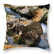 Fall Rushing Mountain Stream Throw Pillow