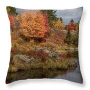 Fall Scene 3 Throw Pillow