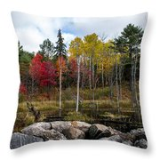 Fall Scene 4 Throw Pillow