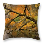 Fall Scene Throw Pillow