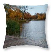 Fall Series 10 Throw Pillow