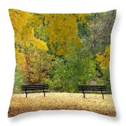 Fall Series 12 Throw Pillow