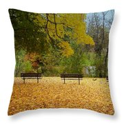 Fall Series 13 Throw Pillow