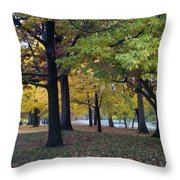 Fall Series 14 Throw Pillow