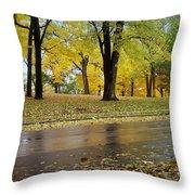 Fall Series 15 Throw Pillow