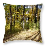Fall Series 2 Throw Pillow