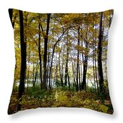 Fall Series 3 Throw Pillow