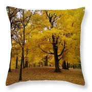 Fall Series 5 Throw Pillow