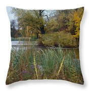 Fall Series 7 Throw Pillow